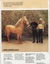 Mego Corp 1982 Catalog Jordache